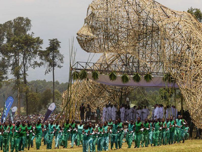 Rwanda's Kwita Izina Kicks Off in Kigali